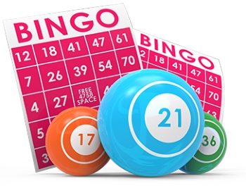how-to-play-live-bingo-in-india